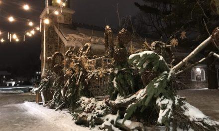 Haïkus québécois – Série Hiver